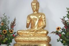 buddha___temple_fqv